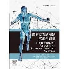 人體筋膜系統機能解剖學圖譜