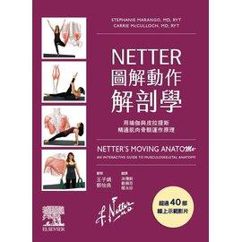 NETTER圖解動作解剖學